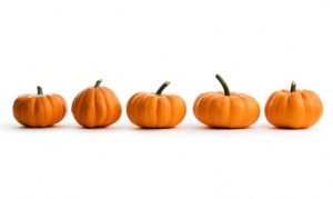 Line-of-pumpkins-from-iStockPhoto
