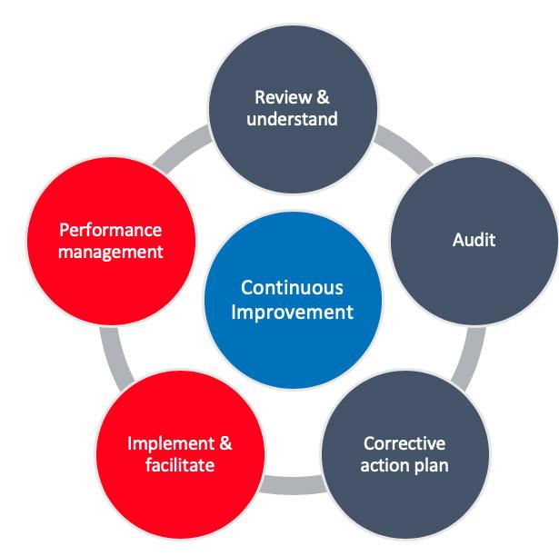 Continuous Improvement Audit from Pro QC
