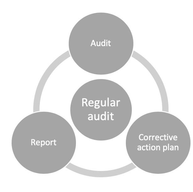 Regular-Audit